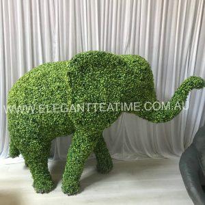 Milo Green Elephant